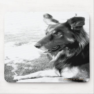 Belgian Shepherd Dog Black and White Mousepad