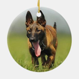 Belgian Shepherd Dog Ceramic Ornament