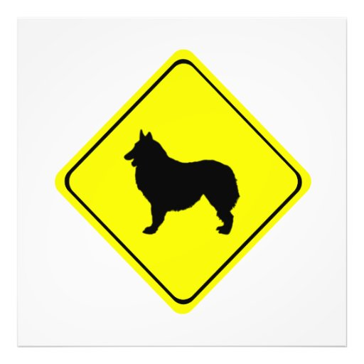 Belgian Shepherd Dog Silhouette Crossing Sign Photo Art