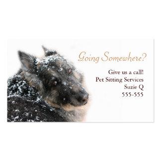 Belgian Shepherd in Snow Business Card