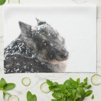 Belgian Shepherd in Snow Kitchen Towel
