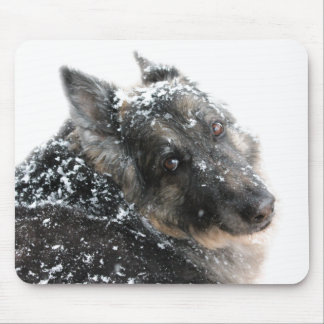 Belgian Shepherd in Snow Mouse Pad