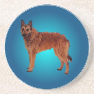 Belgian Shepherd Lakenois  Coaster