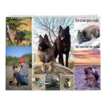 Belgian Shepherd Tervuren calendar