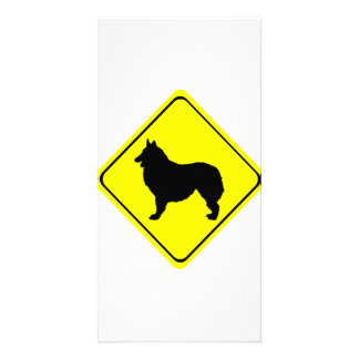 Belgian Shepherd Warning Sign Love Dogs Card