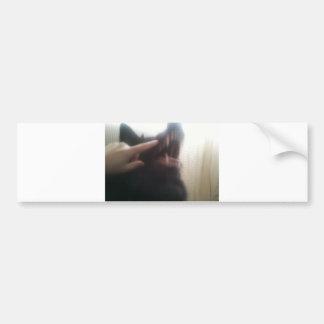 """Belgian Shepherd's Teeth (aka the """"Black Wolf"""") Bumper Sticker"""