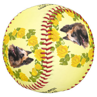 Belgian Tervuren Dogs Rock!! and Yellow Roses Softball