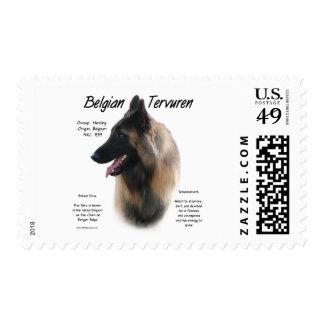 Belgian Tervuren History Design Postage