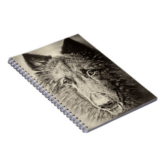 Belgian Tervuren Notebook
