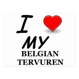 belgian tervuren postcard