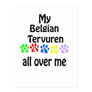 Belgian Tervuren Walks Design Postcard
