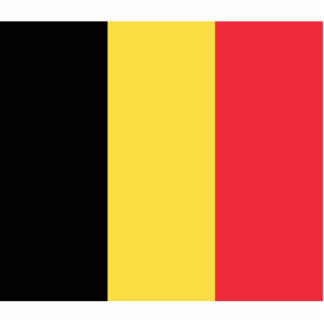 Bélgica - bandera belga fotoescultura vertical