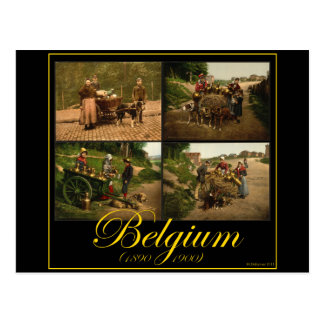 Belgium Dog-Cart Milk Seller Vintage Images Postcard