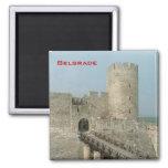 Belgrade Castle 2 Inch Square Magnet