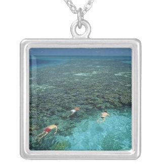 Belice, barrera de arrecifes, filón del faro, azul grimpolas
