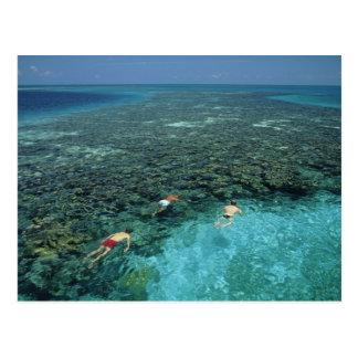Belice, barrera de arrecifes, filón del faro, azul tarjetas postales