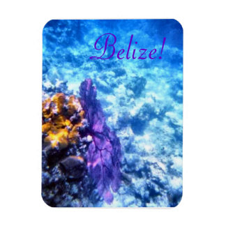 ¡Belice! Imán púrpura del premio de la fan de mar