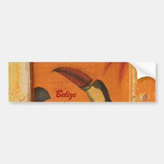 Belice Toucan rústico 1 Etiqueta De Parachoque