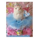 Believe Bunny postcard