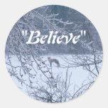 """Believe"" Fox in Winter Field Classic Round Sticker"