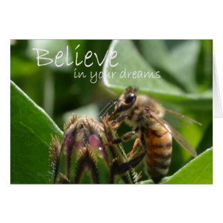 Believe in your Dreams Stationery Note Card