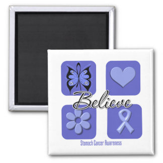 Believe Inspirations Stomach Cancer Magnets