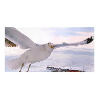 BELIEVE_ PHOTO CARD