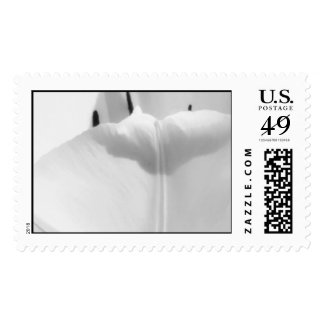 Believe Postage Stamps