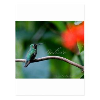 Believe! Post Card