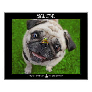 Believe Pug Frog Poster