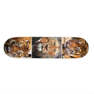 Believe_ Skateboard Skate Boards