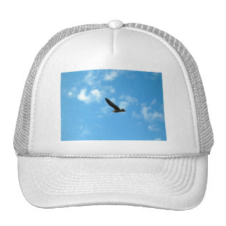 Believe You Can Hat