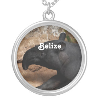 Belize Baird's Tapir Custom Jewelry
