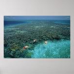 Belize, Barrier Reef, Lighthouse Reef, Blue Poster