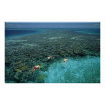 Belize, Barrier Reef, Lighthouse Reef, Blue Print