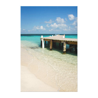 Belize, Caribbean Sea, Goff Caye. A Small Island Canvas Print