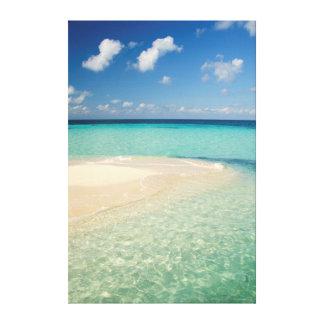 Belize, Caribbean Sea. Goff Caye, A Small Island Canvas Print