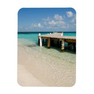 Belize, Caribbean Sea, Goff Caye. A Small Island Magnet