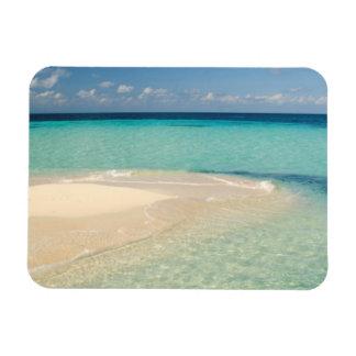 Belize, Caribbean Sea. Goff Caye, A Small Island Magnet