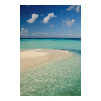 Belize, Caribbean Sea. Goff Caye, A Small Island Poster
