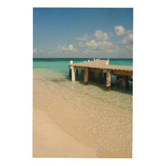 Belize, Caribbean Sea, Goff Caye. A Small Island Wood Wall Art