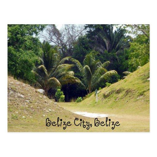 Belize City, Belize Postcard