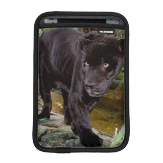 Belize City Zoo. Black panther Sleeve For iPad Mini
