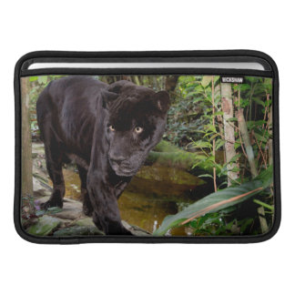 Belize City Zoo. Black panther Sleeve For MacBook Air
