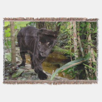 Belize City Zoo. Black panther Throw