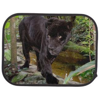 Belize City Zoo. Black panther Car Mat