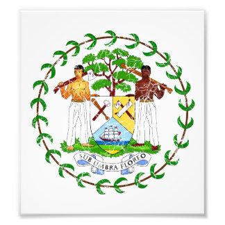 Belize Coat Of Arms Photo Art
