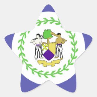 Belize Flag Star Sticker