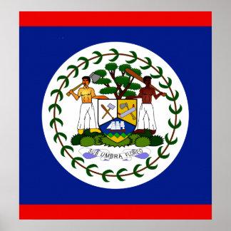Belize High quality Flag Poster