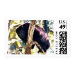 Belize Howler Monkey Stamps